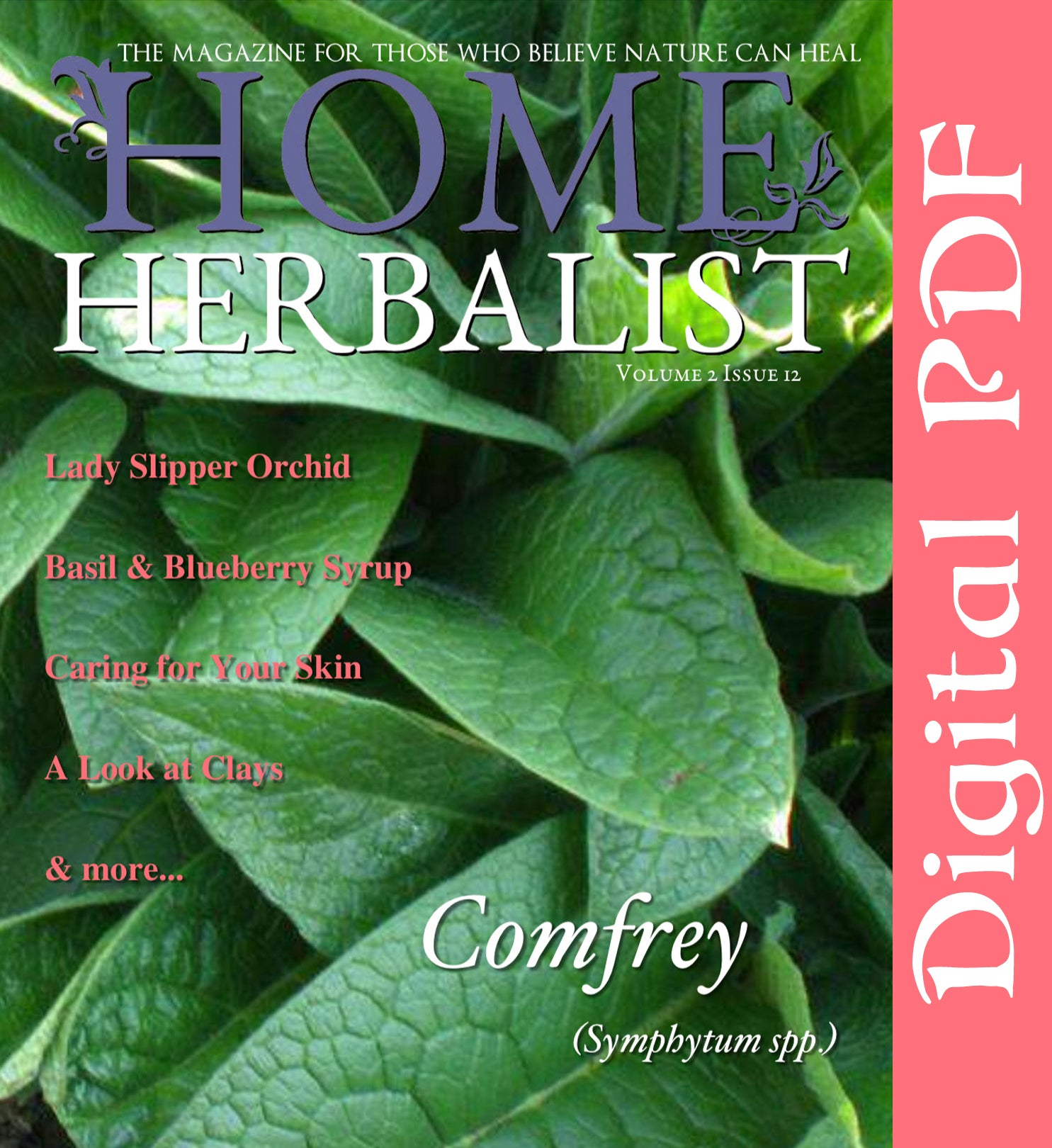 Issue #012 Comfrey