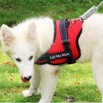 Personalized Patches for your Dog Harness