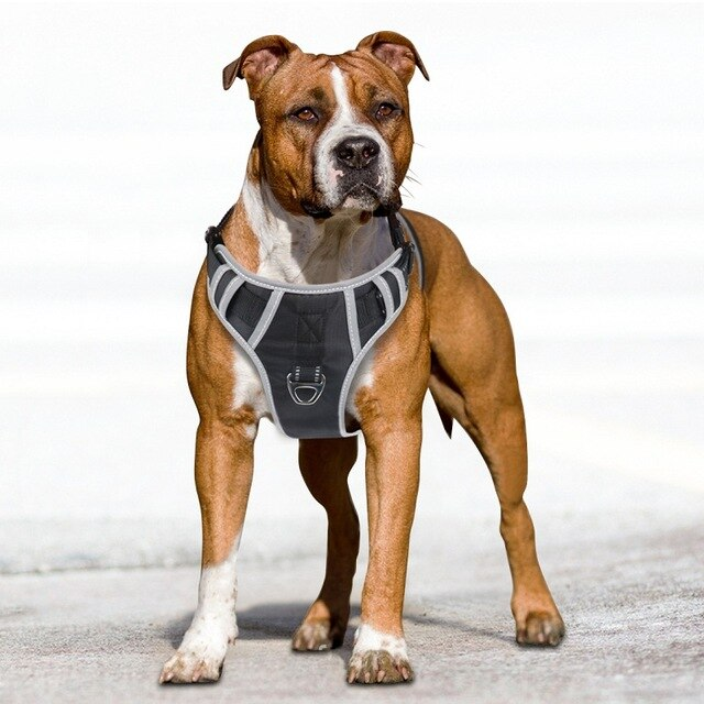 Black Reflective Dog Harness with Handle