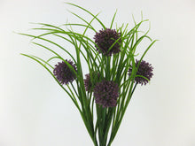 Laden Sie das Bild in den Galerie-Viewer, Allium- Grasbusch lila x 5