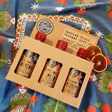 Load image into Gallery viewer, Kent Fruit Vinegars - Gift Set