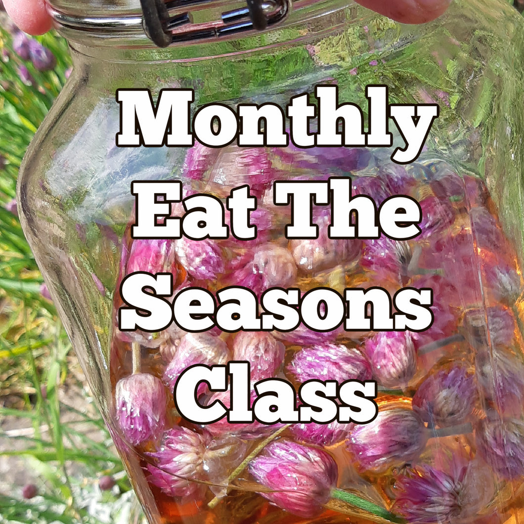 Eat The Seasons w Wasted Kitchen - Monthly Zoom Classes