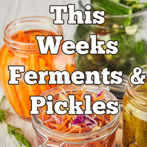 Tuesday Ferments & Pickles