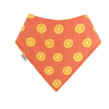 Load image into Gallery viewer, Bandana Bibs 4 Pack - Fruits