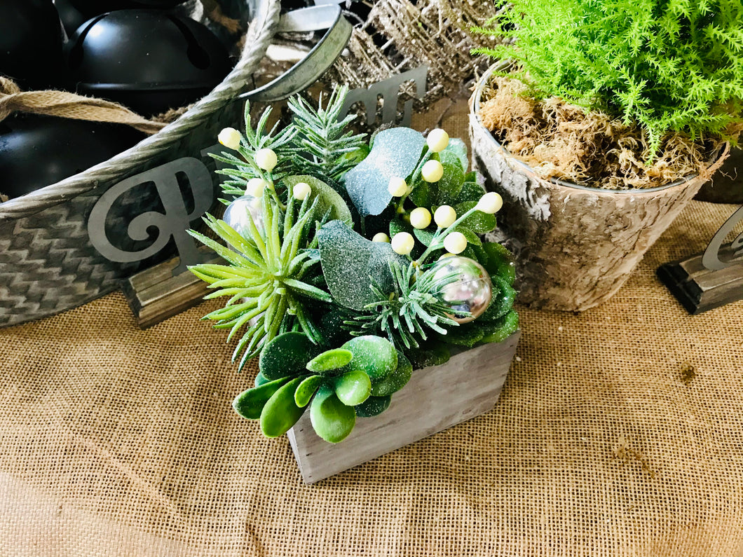 Glittered Succulent Box