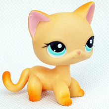Load image into Gallery viewer, rare pet shop lps toys mini stands short hair kitten old figures collection original cute animal
