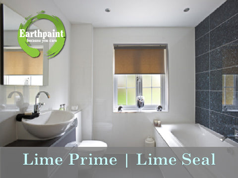 LIME SEAL - MOLD RESISTANT TOP COAT