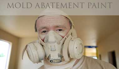 Mold Abatement Projects
