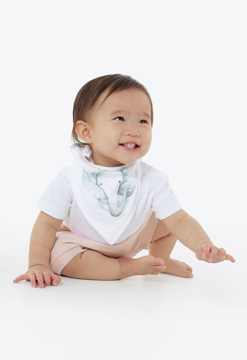 Elephant Triangle Bib