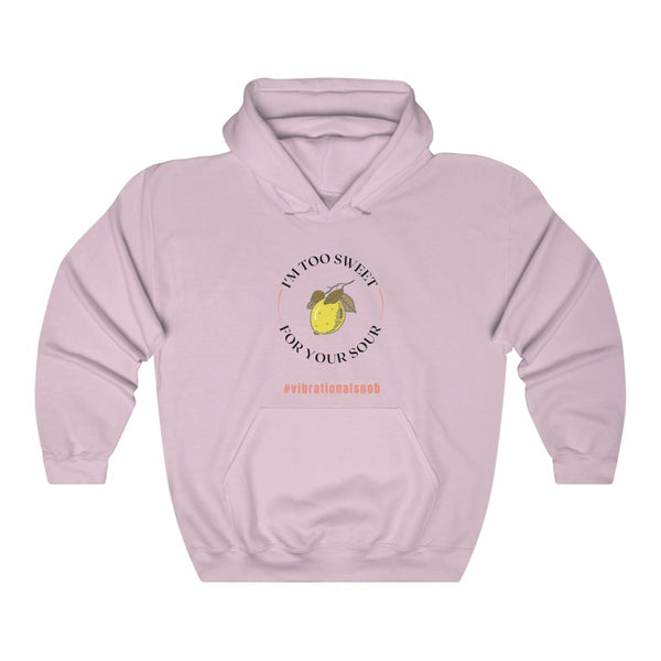 A light pink hoodie with a quote Vibrational Snob