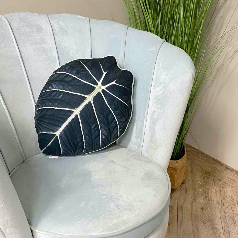 Alocasia Black Velvet pillow