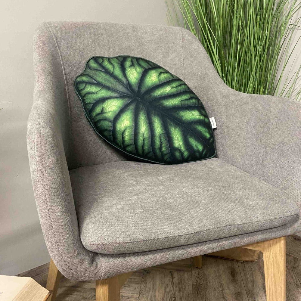 Alocasia plant pillow