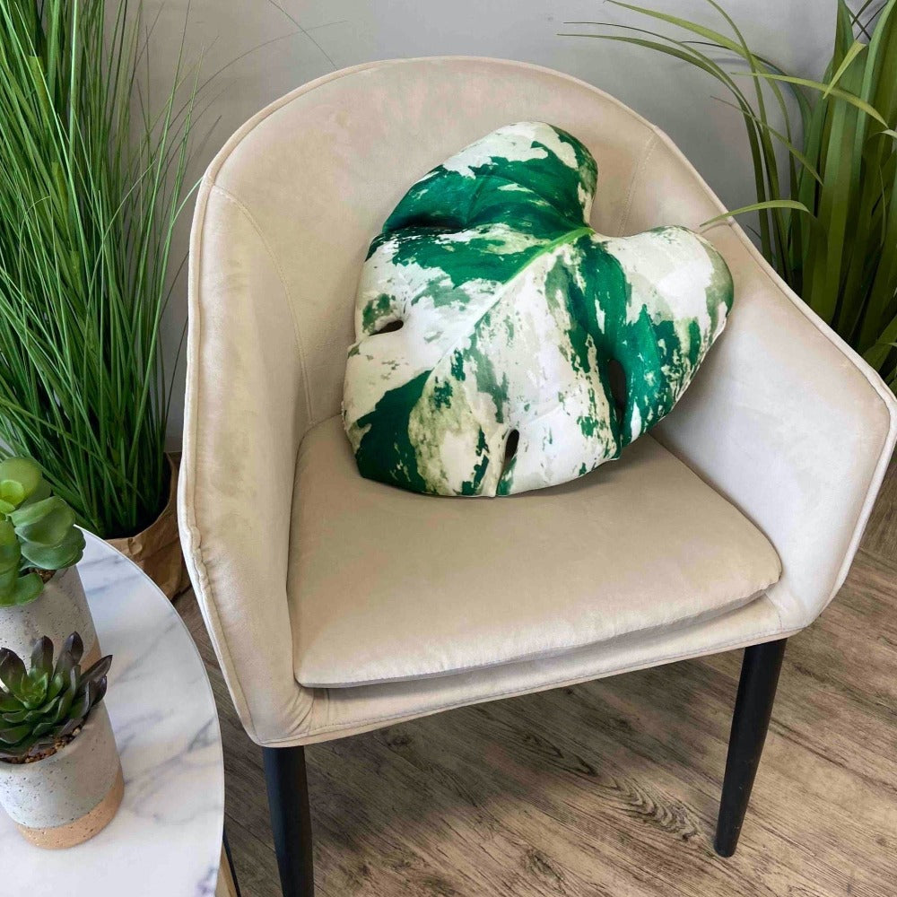 Variegated albo Monstera pillow