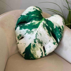 Variegated Monstera cushion