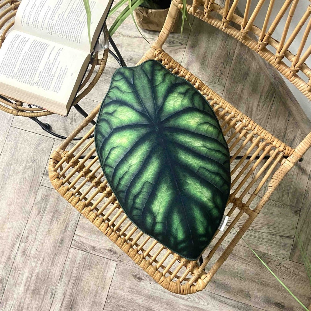 Alocasia Dragon Scale pillow