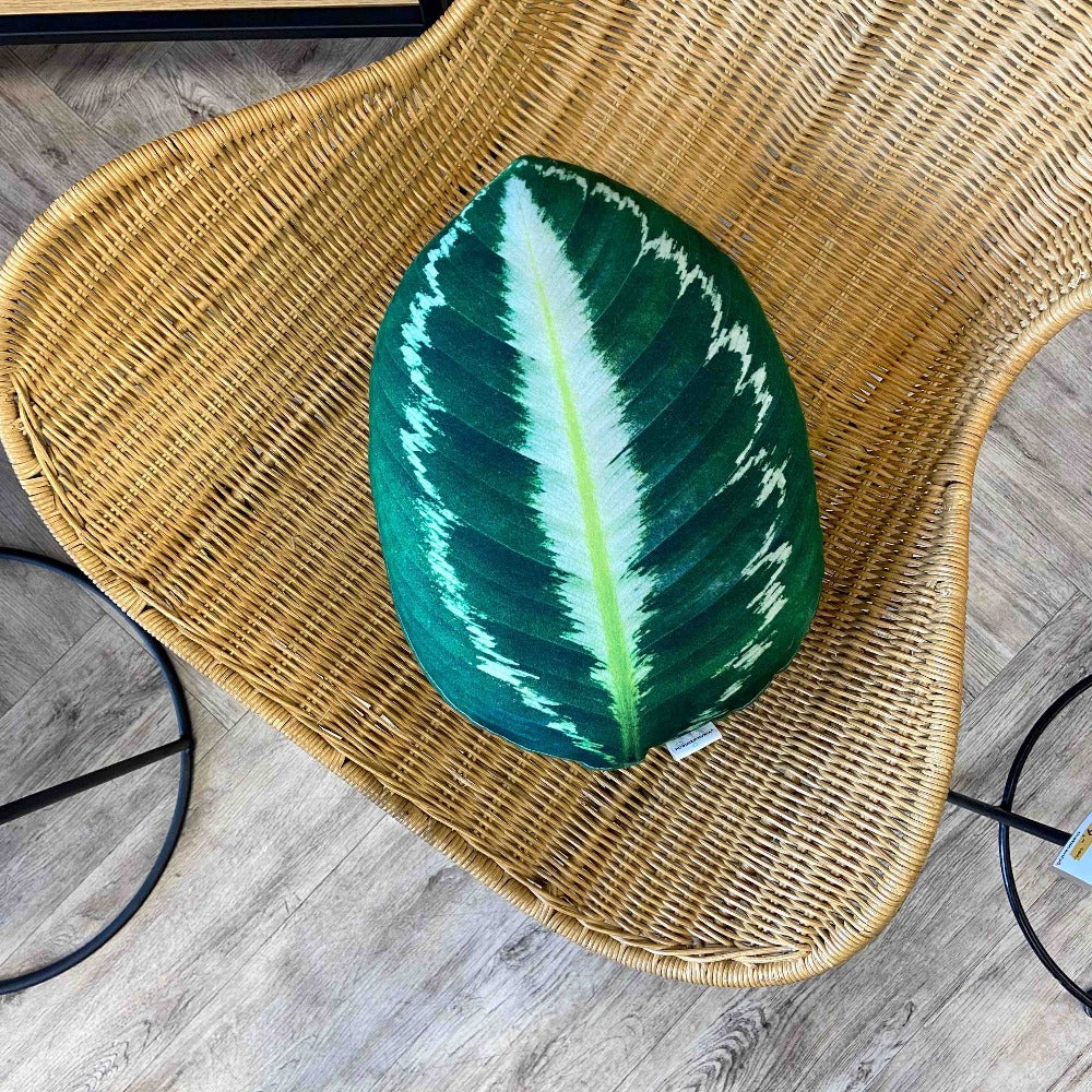 Calathea pillow / Calathea leaf / Calathea medallion / prayer plant pillow