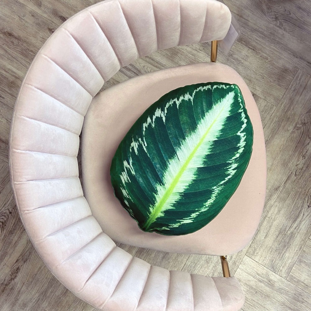 calathea pillow