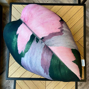 philodendron plant pillow