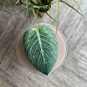 Philodendron Birkin pillow / Philodendron Birkin / plant pillow