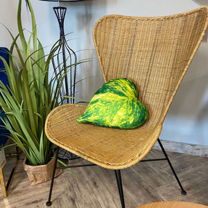 pothos pillow