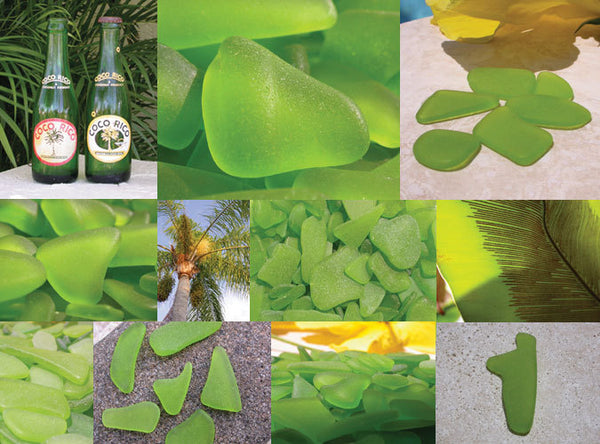 This lime green sea glass was collected by Lisl Armstrong in Rincon, Puerto Rico.