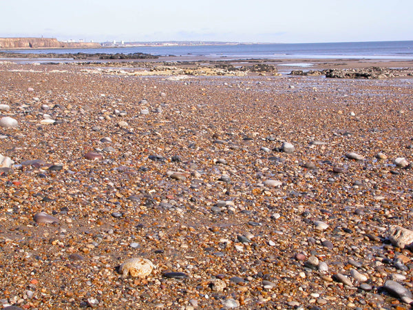 The sea pebble spread on a beach in Seaham, England where sea glass can sometimes be found.