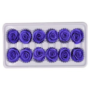 12 Pcs High Quality Preserved Flowers Immortal Rose Valentines Day Gift For Girlfriend Mothers Day Eternal Life Flower Gifts Box