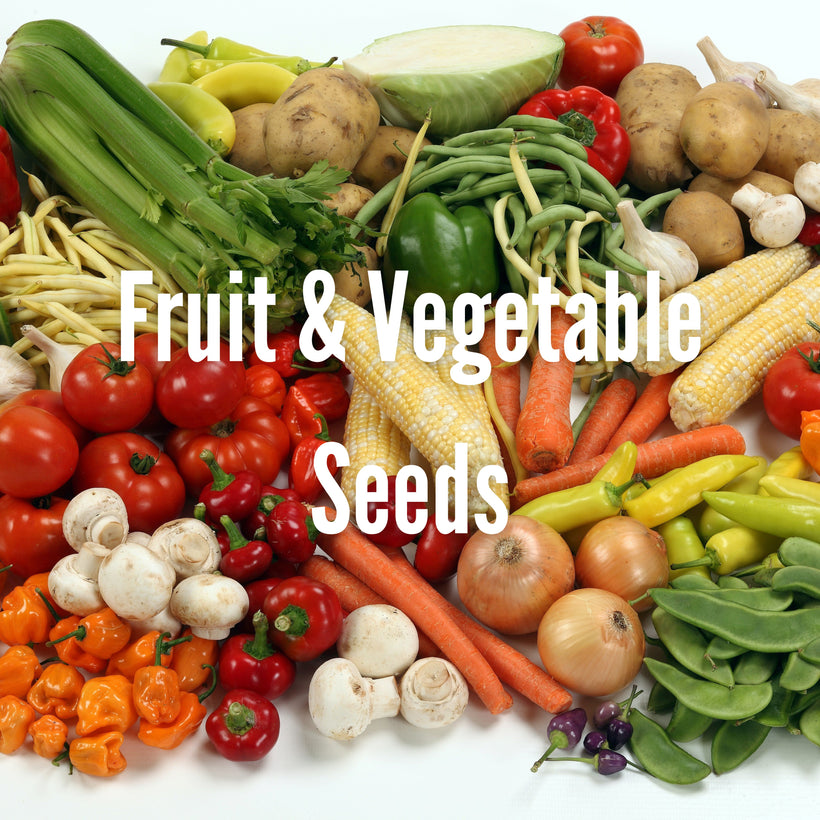 Vegetables and Fruits Seeds