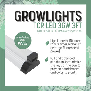 Growlight TCR LED 36W 3FT