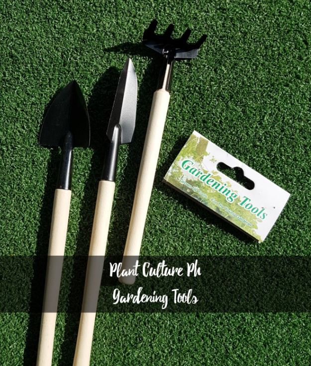 Succulent and Cactus Gardening Tools by Plant Culture PH