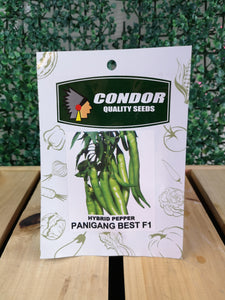 Condor Quality Seeds Hybrid Pepper Panigang Best F1 0.5 grams