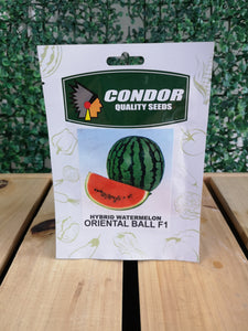 Condor Quality Seeds Hybrid Watermelon Oriental Ball F1 2 grams