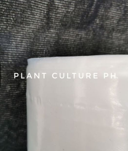 Plant Culture PH Greenhouse UV Sheet 150 microns 6 mils 3x1 meter