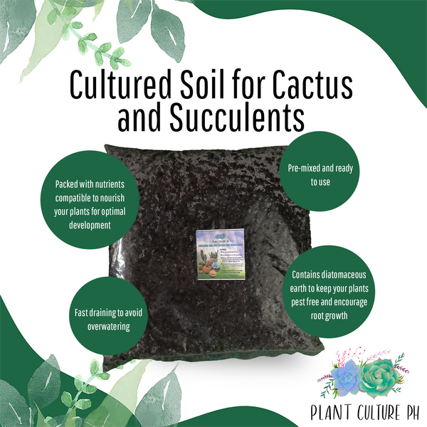 Cultured Soil for Cactus and Succulent