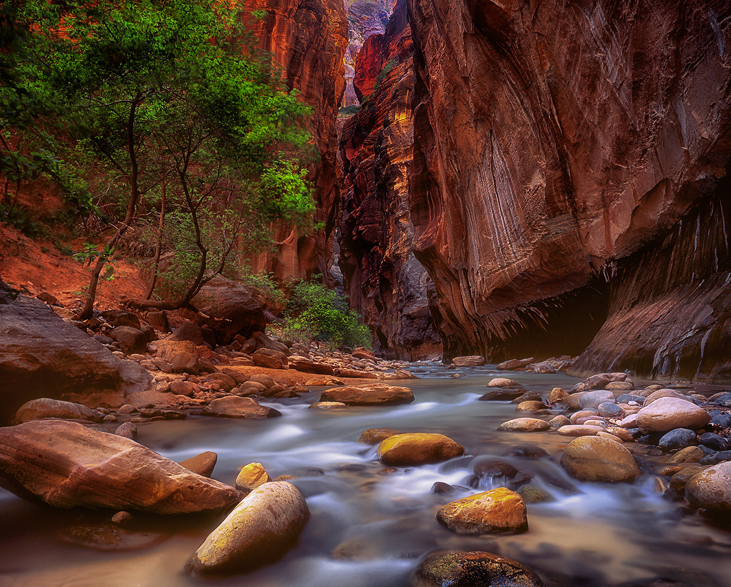 Virgin River - Zion