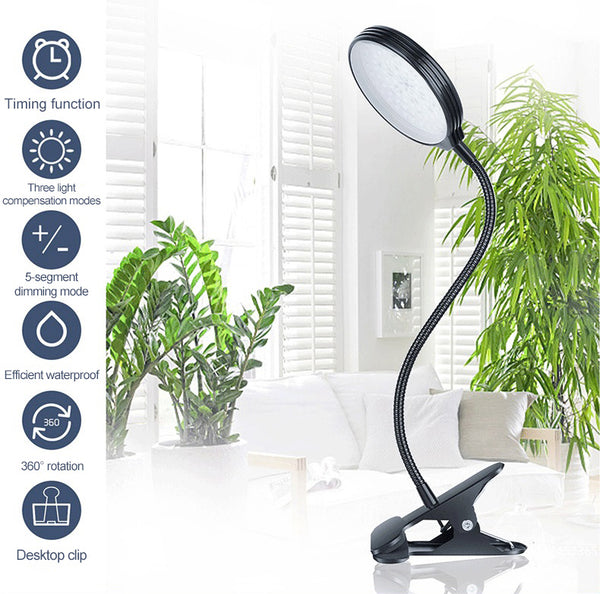 growth lamp for plants.jpg