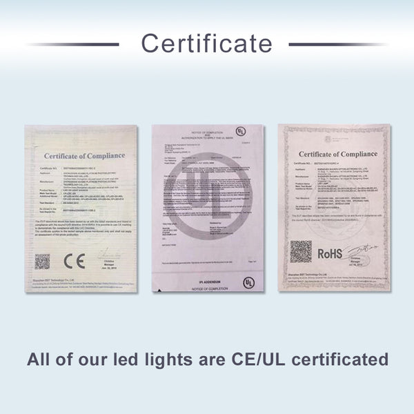 multi colored chandelier lighting certificate.jpg