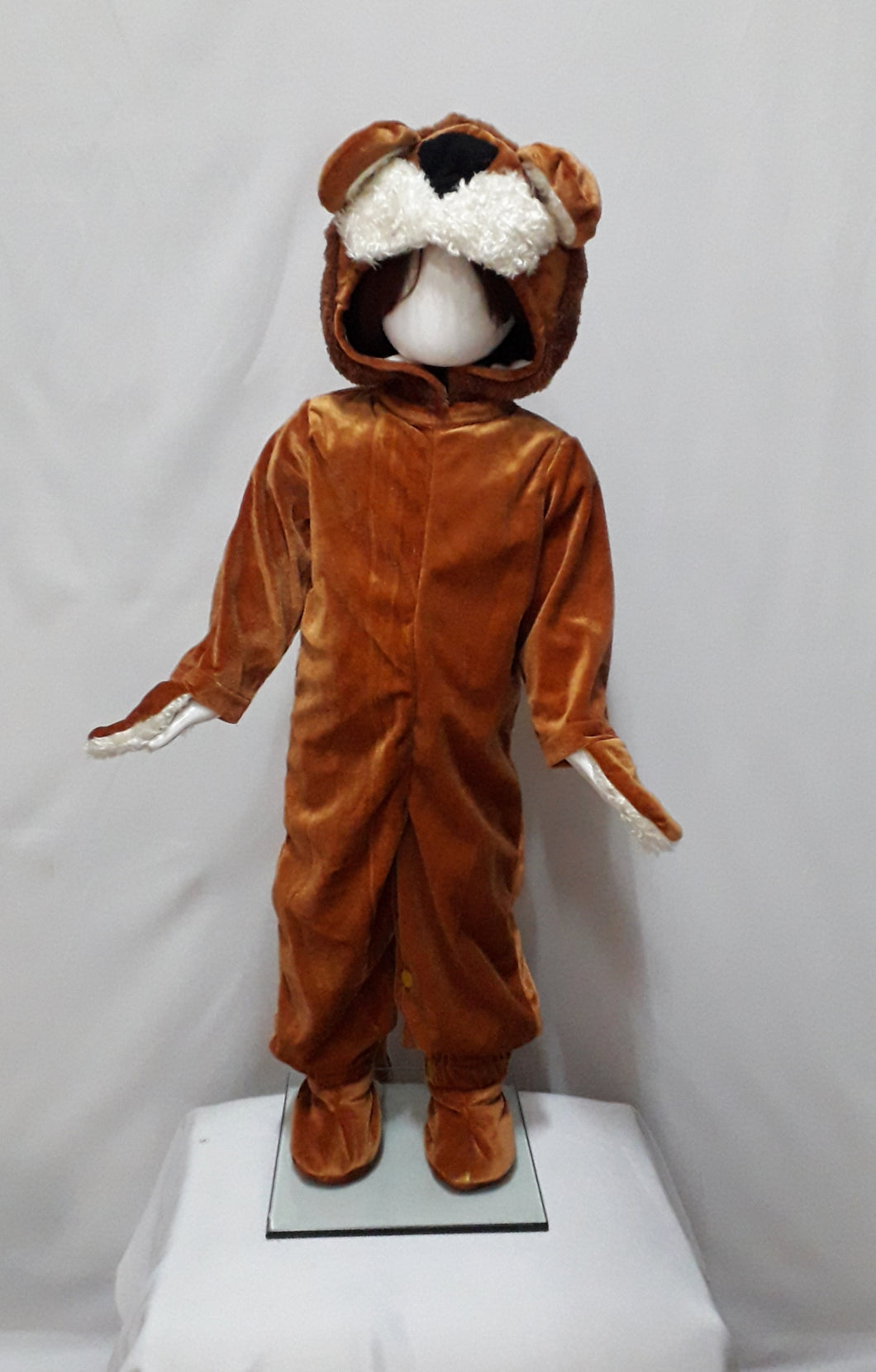 Lion costume for kids