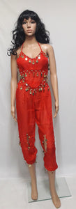 Belly Dance Costume (Adult)