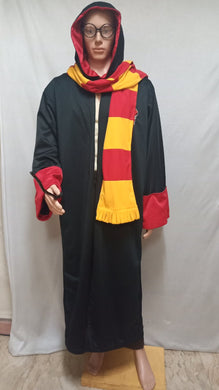 Harry Potter Costume 2