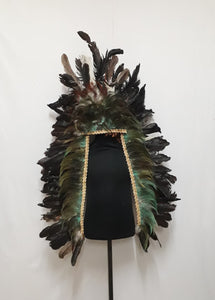 Indian Headdress 2