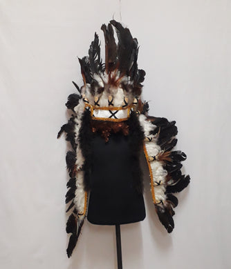 Indian Headdress 8
