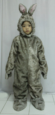 Rabbit Costume 1