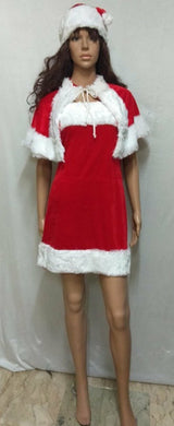 Santa Claus Lady Costume