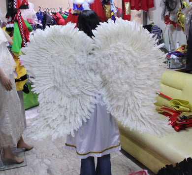 Angel Costume Adult