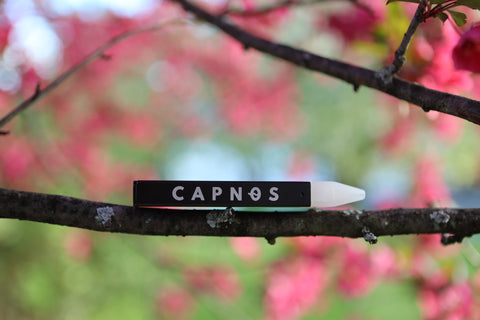 CAPNOS Zero sitting on a branch with pink blossoms in the background