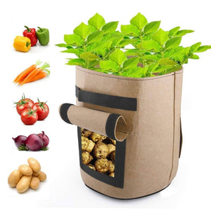Gallon Plants Grow Bags