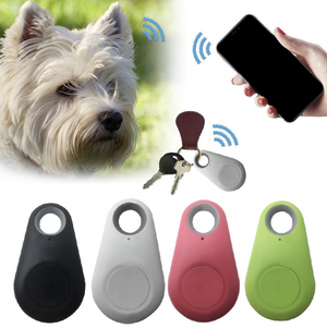 The Rascal Radar - Pet Finder