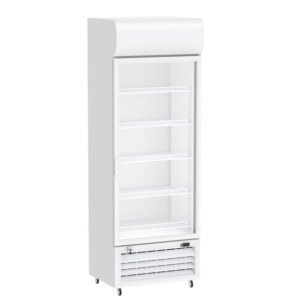 Celsius Upright Display Freezer 650 Liters - White
