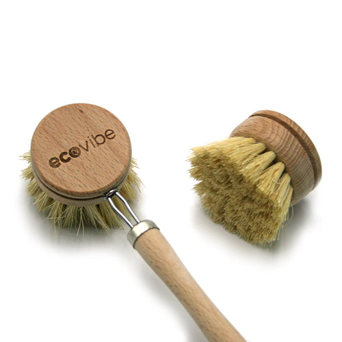 Cactus Bristle Wooden Dish Brush